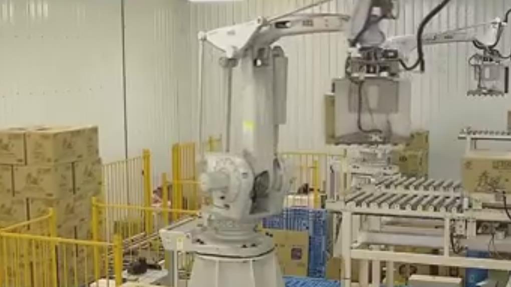 直擊!衛生紙產線 日產能逾175萬包