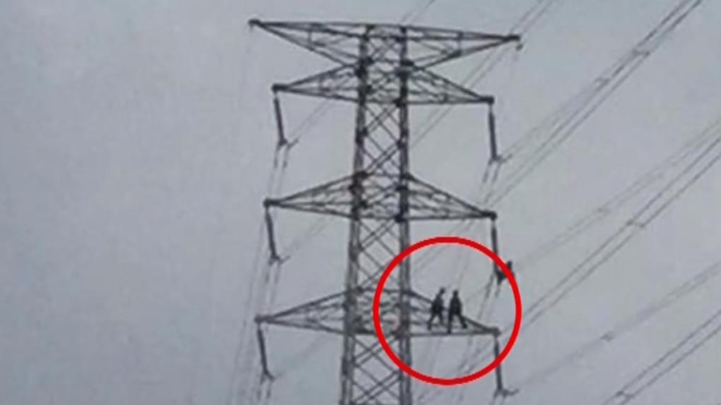 台電員工辛苦維修電塔 網友:高層只會鬥