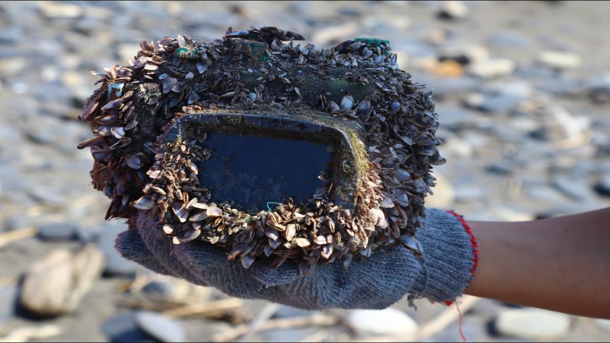 日本相機疑「環太平洋」漂來台灣還有電!網友瘋猜超強防水殼