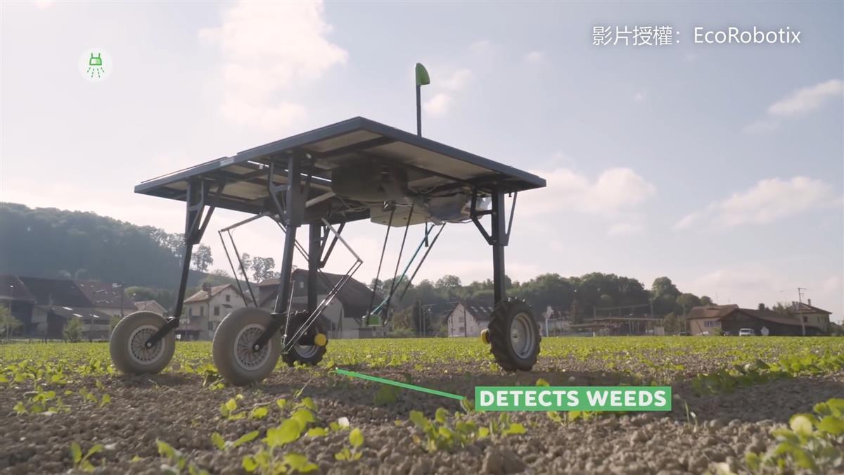 旋轉吧!農藥機器人 省95%除草劑 農夫笑了