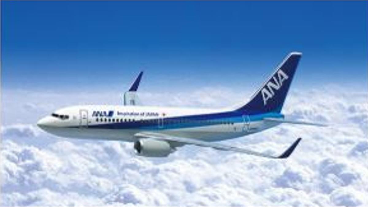 政府鼓勵國人拒搭「矮化」航空!教授提:乾脆禁飛台灣好了