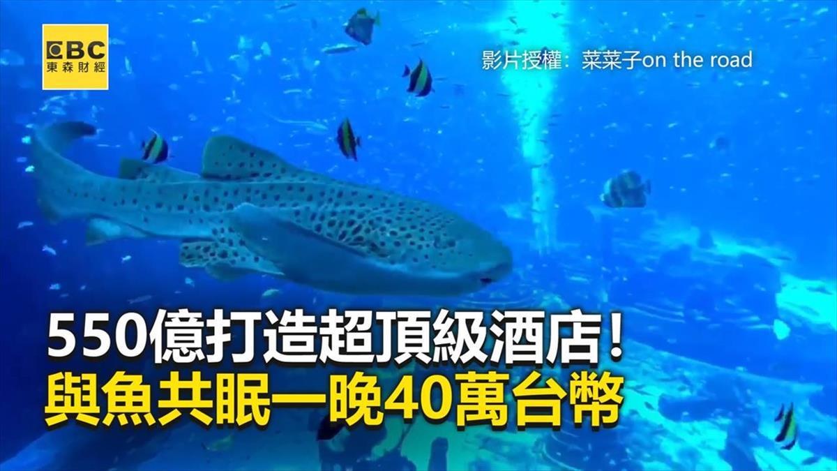 550億打造超頂級酒店! 與魚共眠一晚40萬台幣
