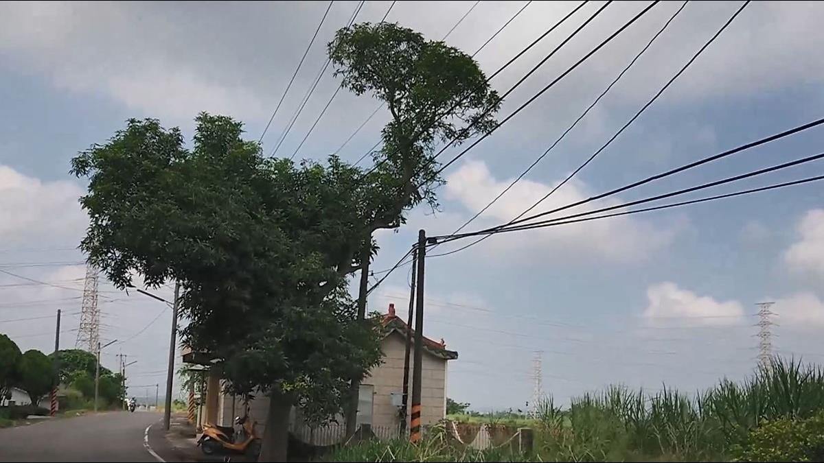 「電人怪怪屋」竟是台電漏電 屋主要聲請國賠