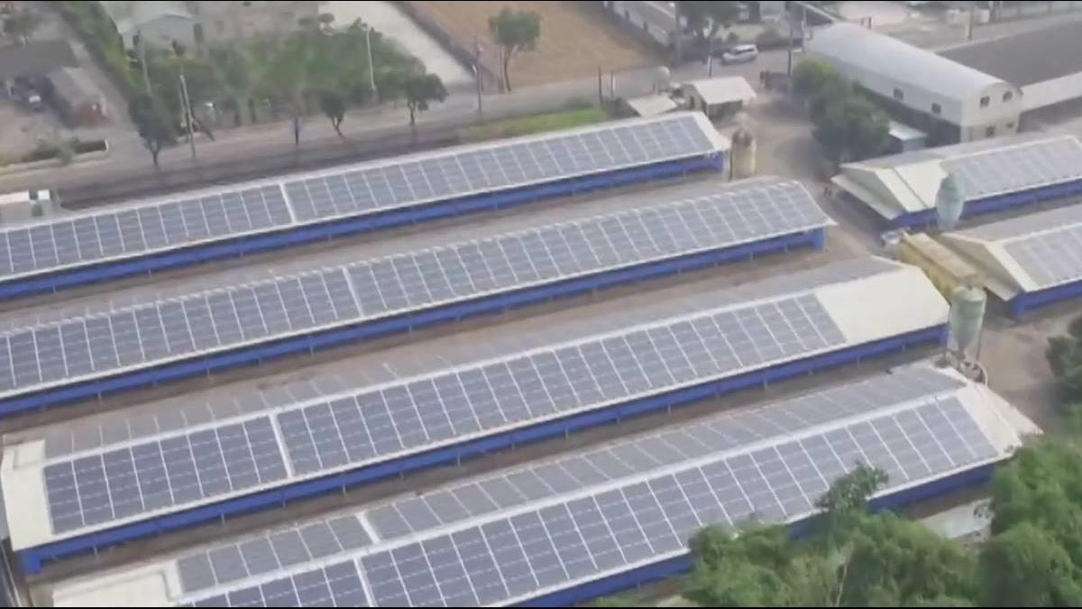 出租屋頂賺220萬 太陽能板兼保護小雞