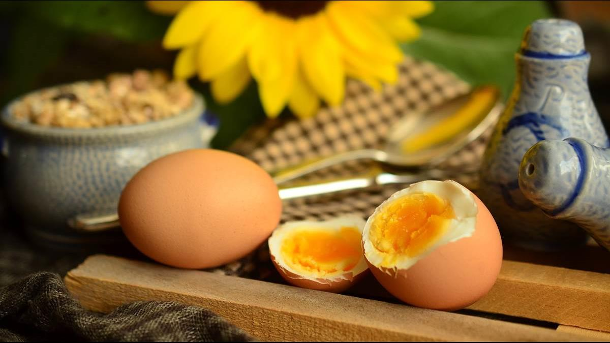 這一餐吃水煮蛋最適合! 營養師揭3大好處