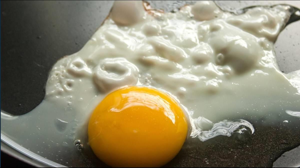 「雞蛋1斤飆破45元」民怨買不到蛋!農委會這樣說