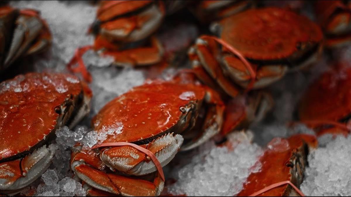 花光預算亂血拼?美國防部1個月砸1.4億買龍蝦螃蟹
