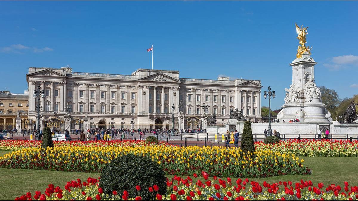 英女王徵小編年薪120萬 遭柯基狠甩10條街?