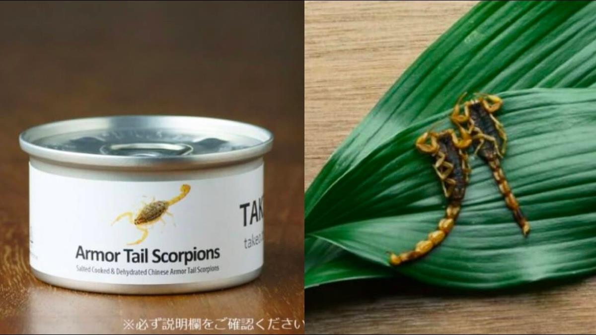 1小罐1200元!超營養蟲蟲罐頭掀國外嘗鮮熱
