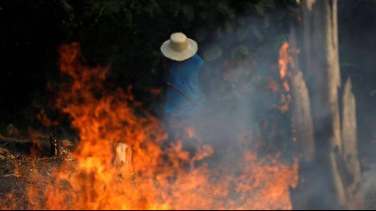 政策放鬆惹的禍? 亞馬遜火災數量增80%