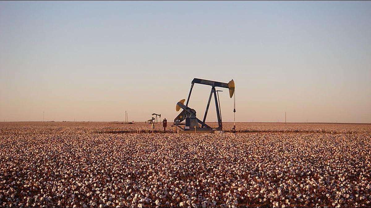這家族百年前買下石油寶地!如今值300億還不賣