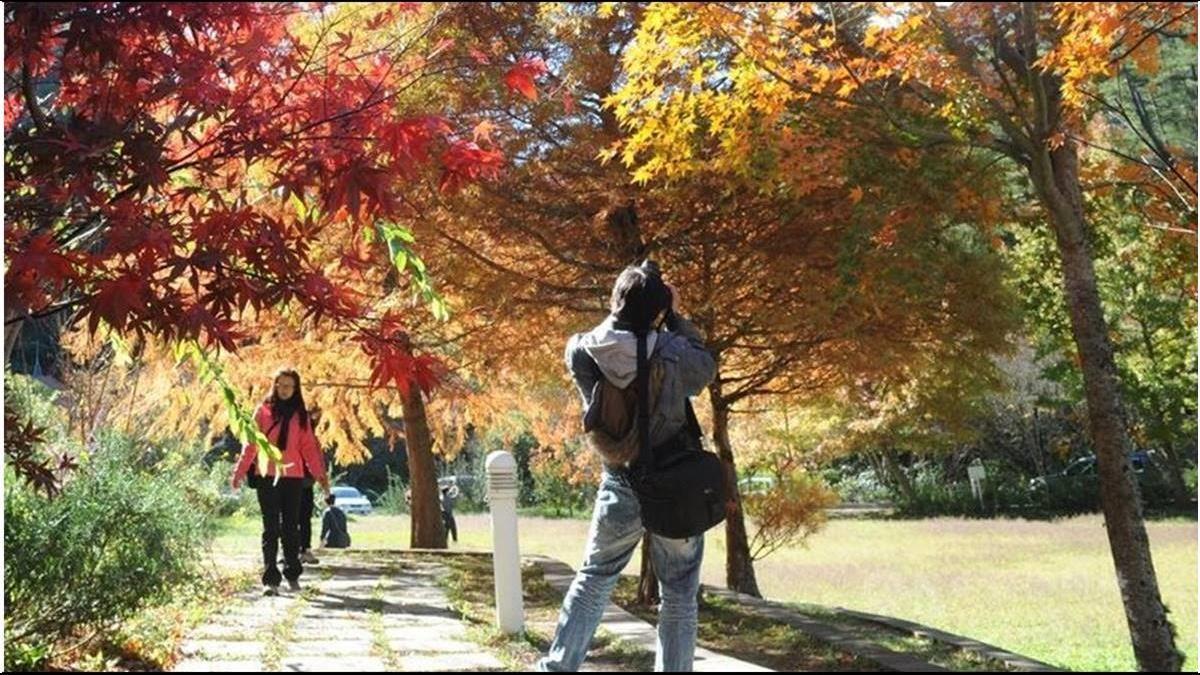 秋冬獎勵撒錢救國旅沒效?近6成民眾不買單 仍選出國旅行