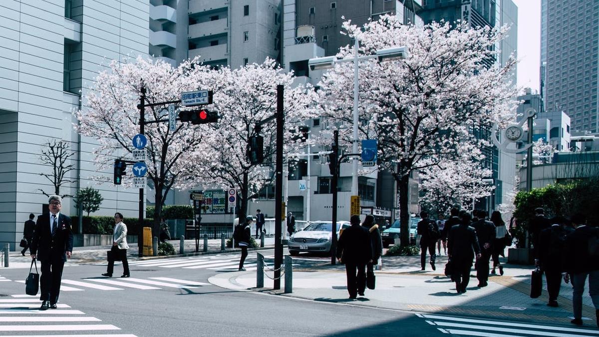 日本人全世界最冷漠?幫助陌生人次數全球最低