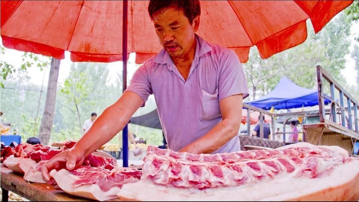 中國豬肉戰儲已耗盡!中糧集團自丹麥購買 1 億美元的豬肉
