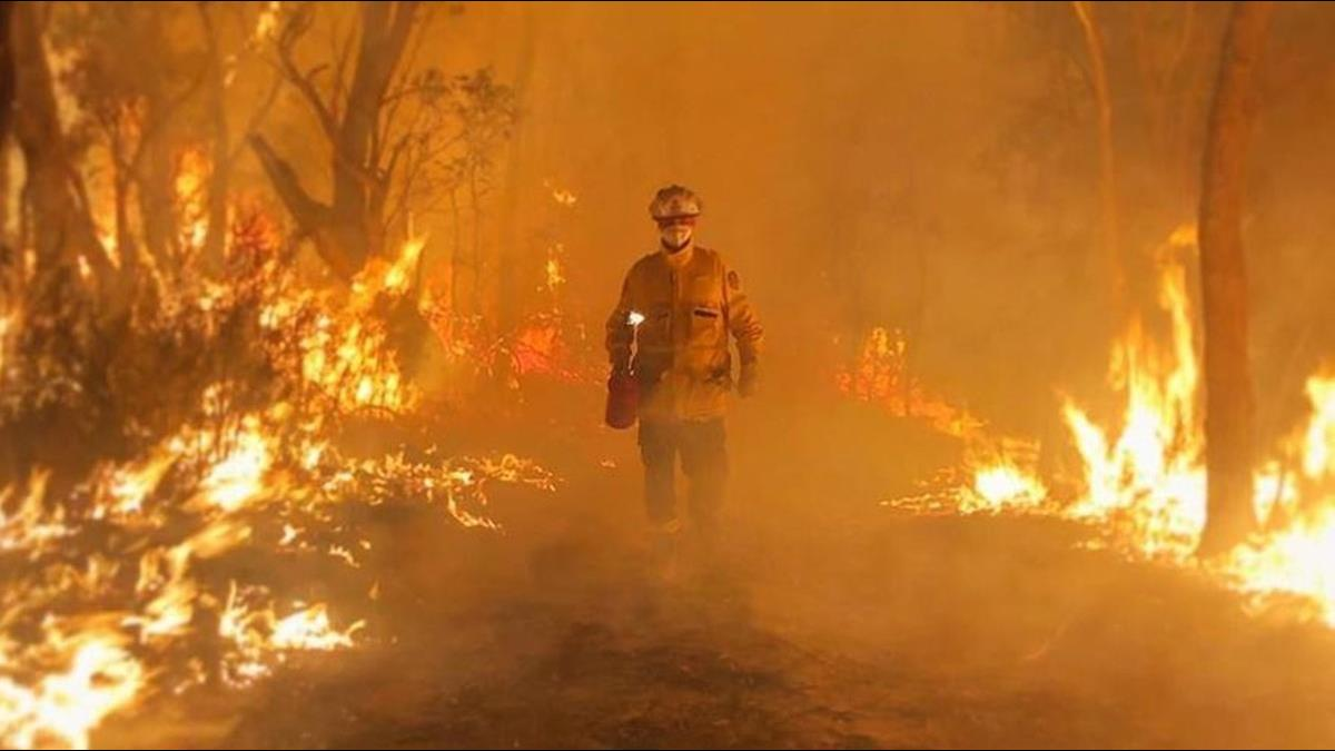 危機未完!澳洲下雨撲滅32處火場 豪雨卻恐再釀災