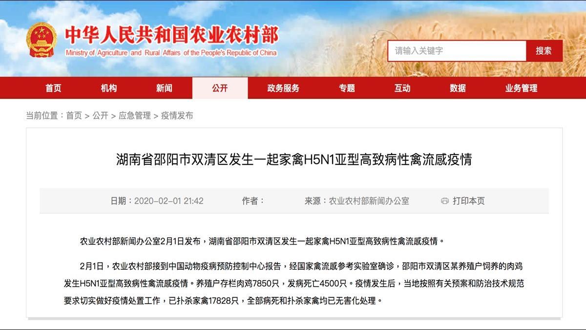 武漢肺炎還沒完 湖南竟傳H5N1高致病性禽流感!
